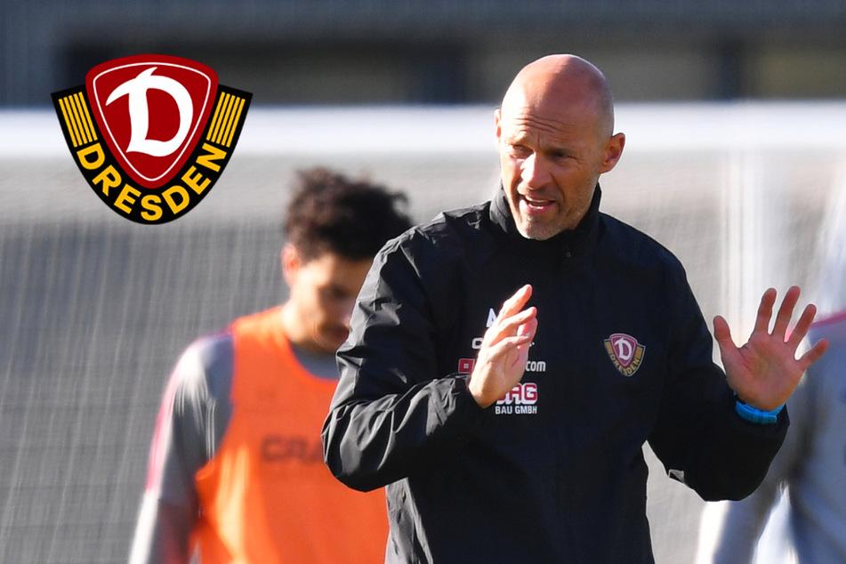 Dynamo-Coach Alexander Schmidt und der Faktor Zeitdruck