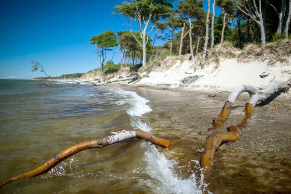 Unbekannte tote Frau aus der Ostsee gibt der Polizei weiter Rätsel auf