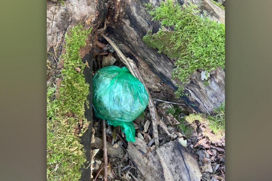 Die Drogenbeutel waren im Unterholz verscharrt und im Baumgeäst deponiert.