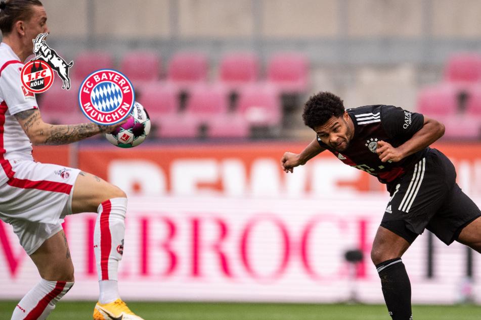 Handelfmeter läutet Sieg ein: FC Bayern zwingt wackeren 1. FC Köln in die Knie