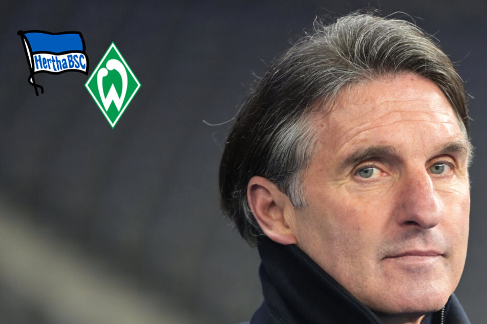 Hertha-Coach Labbadia vor dem Aus? Alte Dame kassiert klare Heimpleite gegen Bremen!