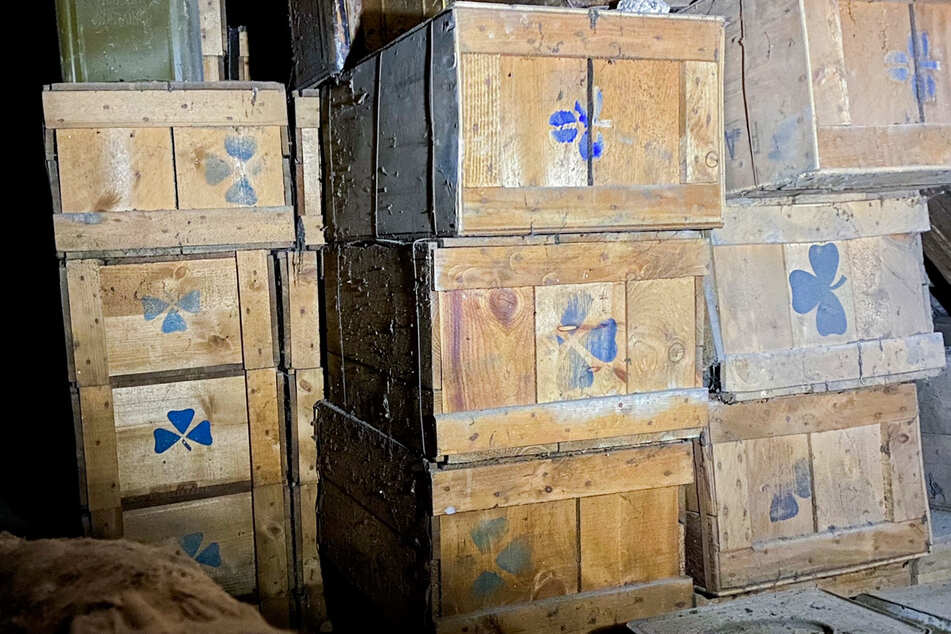 Die Kisten, in denen die Kartoffeln lagerten, haben 76 Jahre auf dem Buckel.