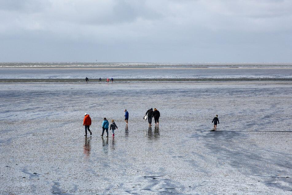Dramatische Rettungsaktion! Frau steckt 400 Meter vor der Küste im Schlick