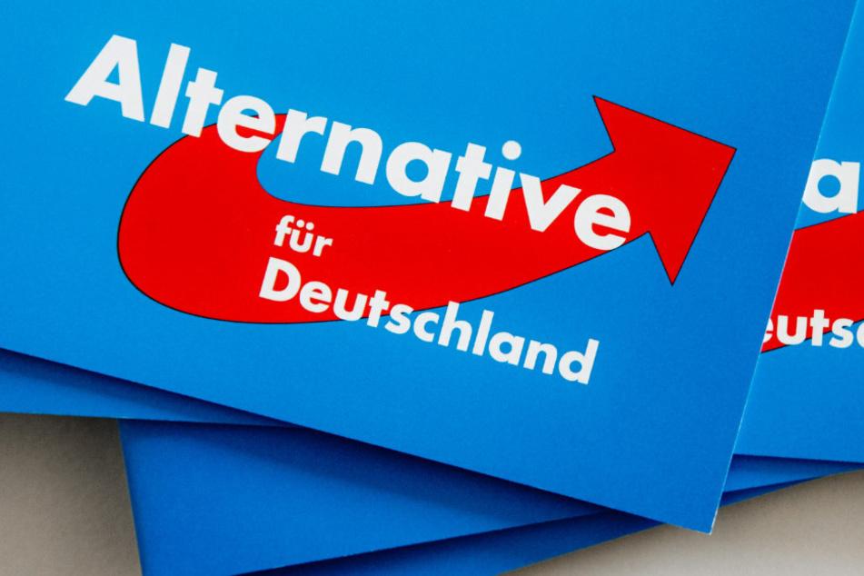 Nach internen Querelen: AfD erleidet Einbruch im Osten Deutschlands