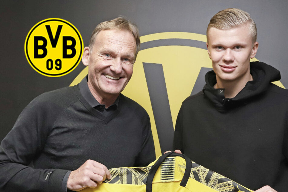 """BVB-Boss Watzke über heiß begehrten Haaland: """"Gibt keinen Alternativplan"""""""