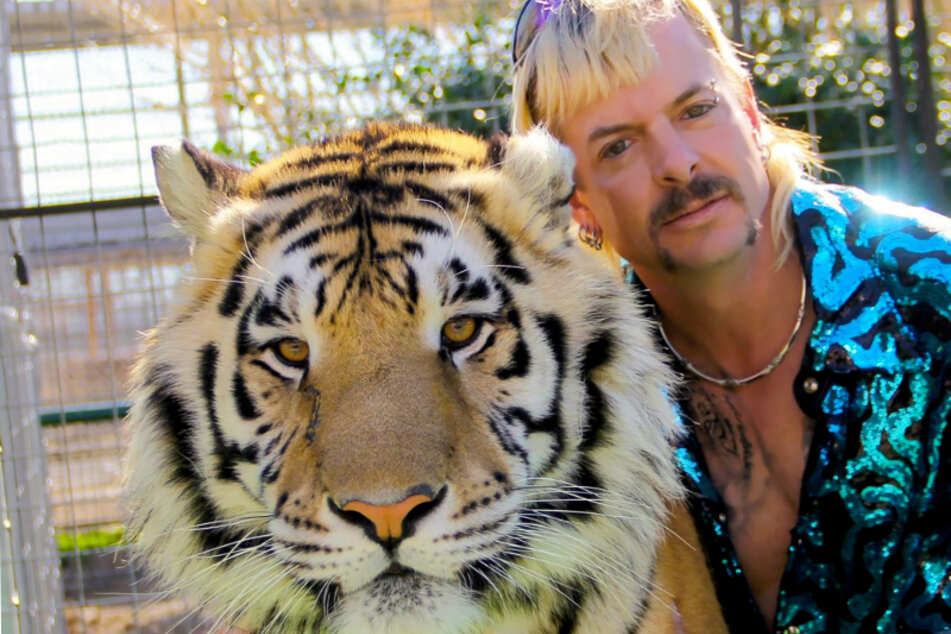 Joe Exotic hat keine Angst vor seinen Wildkatzen und kuschelt auch gern mit ihnen.