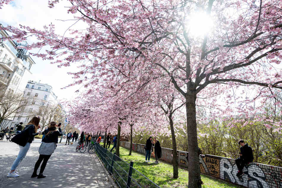 Wetter in Berlin und Brandenburg: Es wird endlich wieder wärmer, aber auch nass