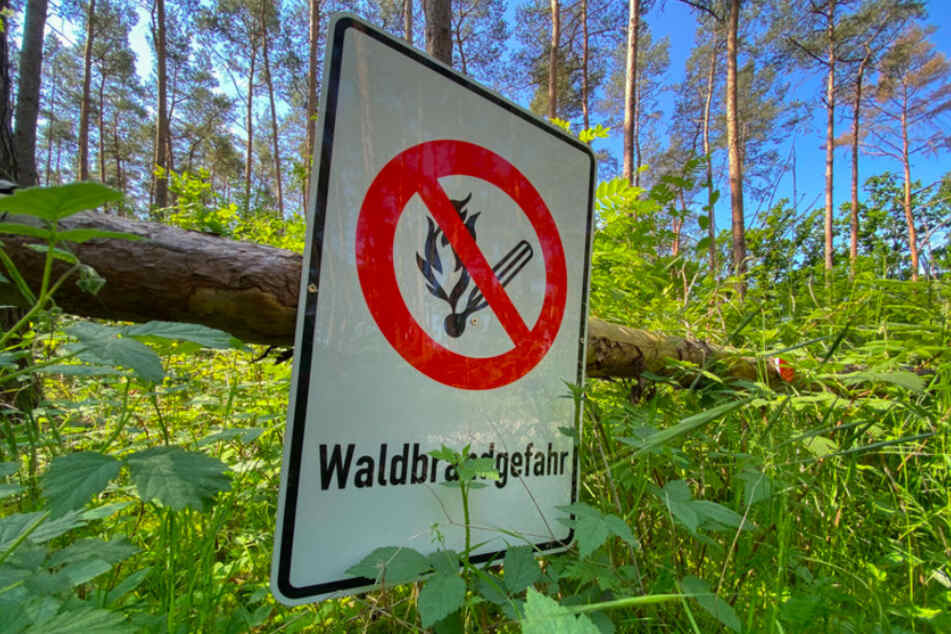 In Teilen Bayerns gilt akute Waldbrandgefahr.
