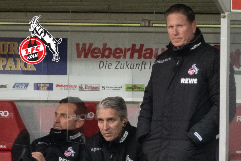 Nach Kölner Freiburg-Pleite: Gisdol auch beim nächsten Spiel an der Seitenlinie