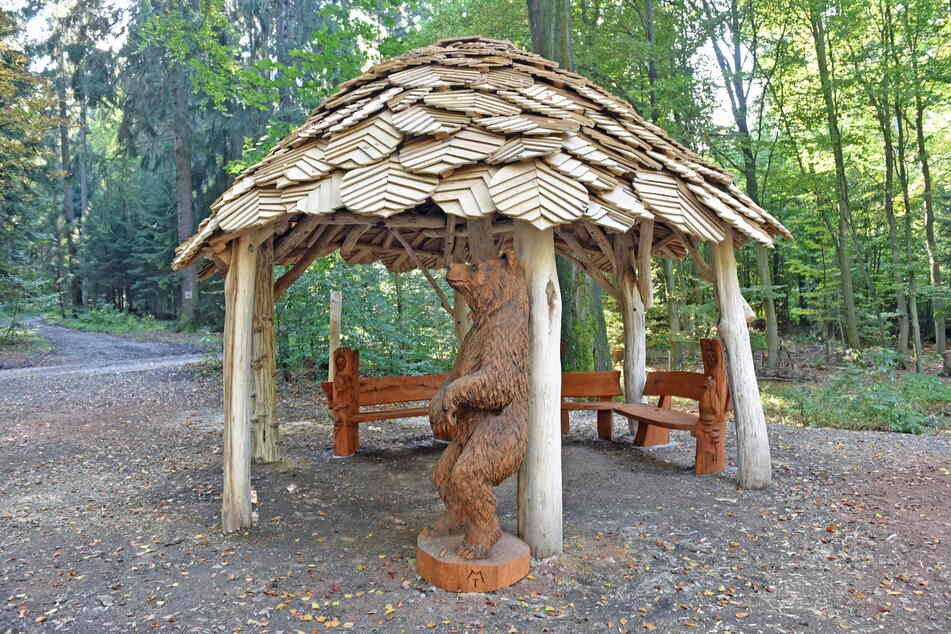 An der neuen Schutzhütte erwartet die Besucher ein Braunbär aus Holz.