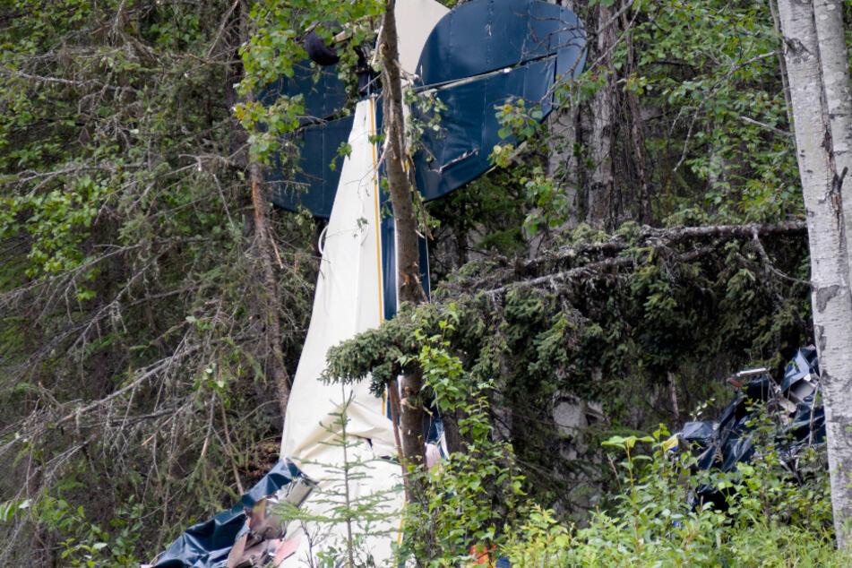 Kleinflugzeuge stoßen zusammen: Sieben Tote, darunter ein Abgeordneter