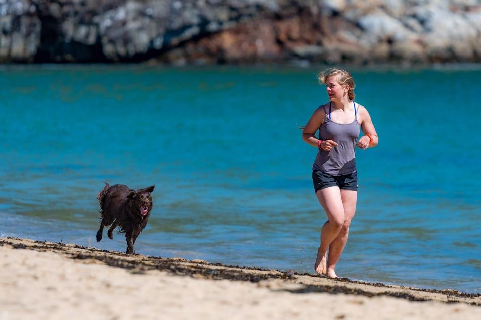 Was gibt es Schöneres, als den Tag mit seinem Hund am Strand zu verbringen.