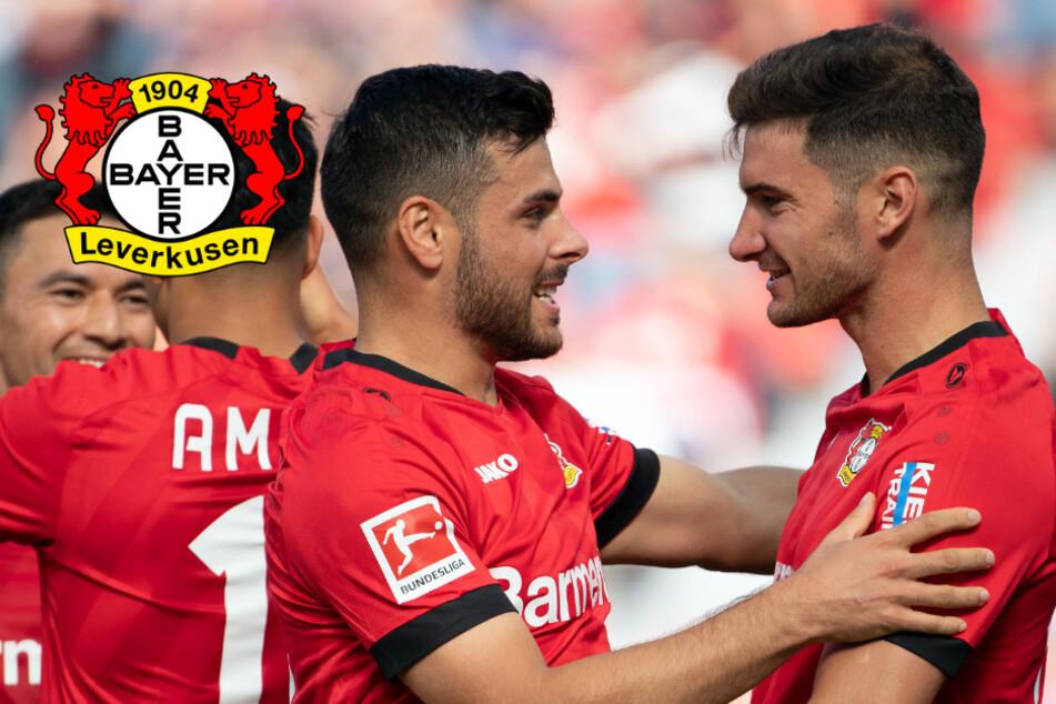 Duo vor Abschied: Lässt Leverkusen Alario und Volland ziehen?