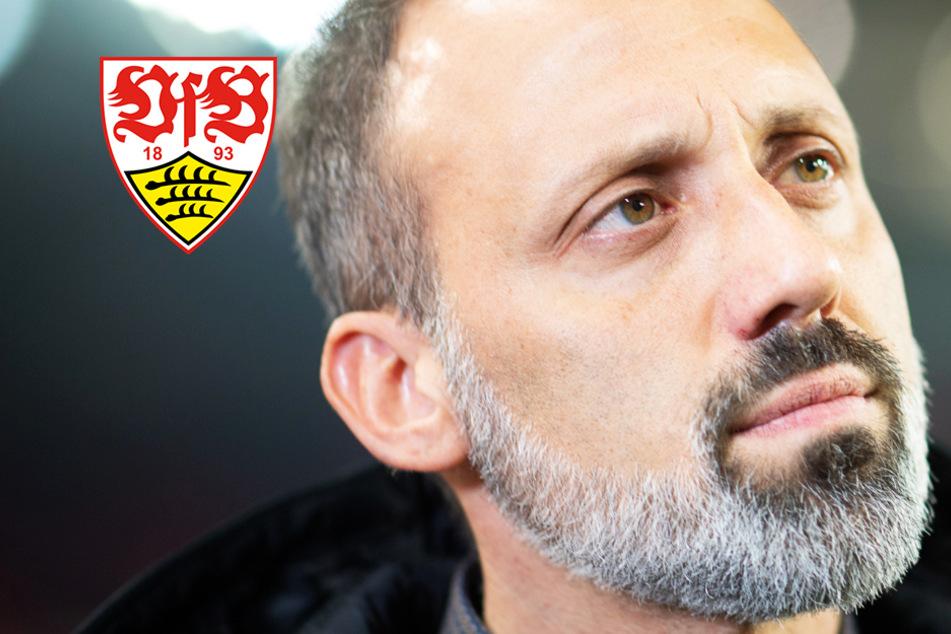 """VfB-Coach Matarazzo spürt vor Duell gegen den HSV Druck: """"Weil ich Perfektionist bin!"""""""