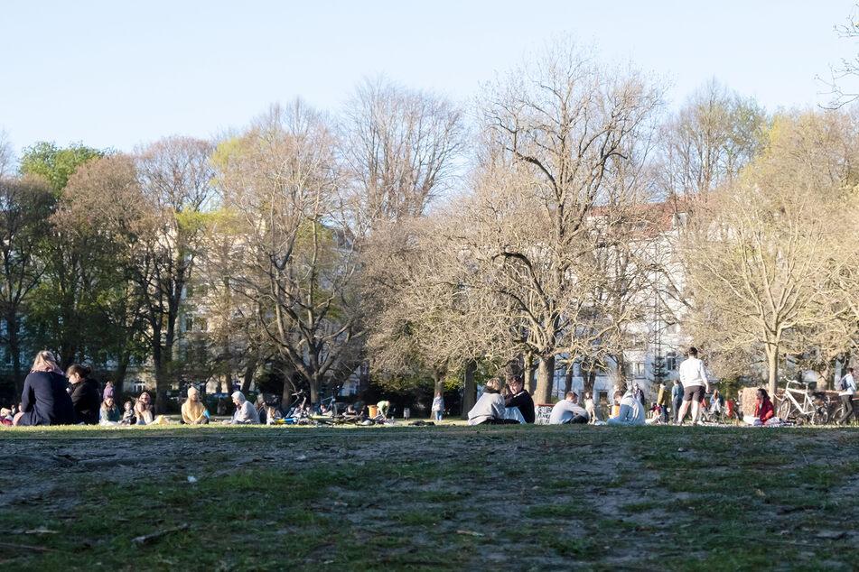 Menschen sitzen im Kieler Schrevenpark und genießen mit Abstand zueinander die Abendsonne.