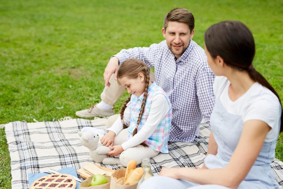 Eltern sitzen mit ihrem (Pflege-)Kind auf einer Decke auf einer Wiese. (Symbolbild)