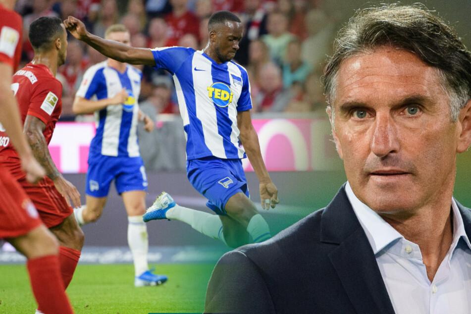 Bruno Labbadia reist mit einem klaren Plan zum FC Bayern München. Trifft Dodi Lukebakio (l.) erneut?