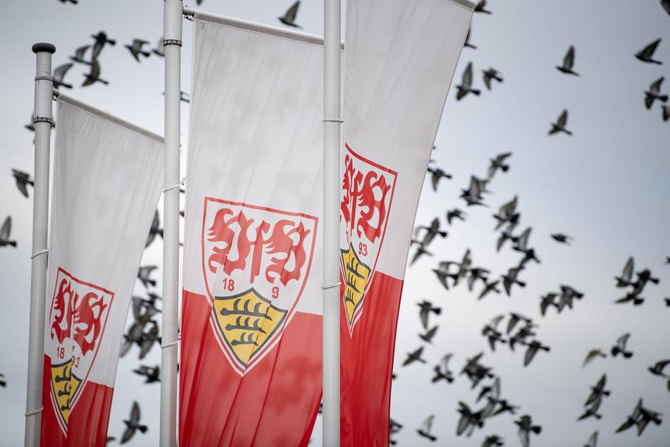 Flaggen mit dem Logo des Fußball-Bundesligisten VfB Stuttgart wehen auf dem Trainingsgelände im Wind. (Archivbild)