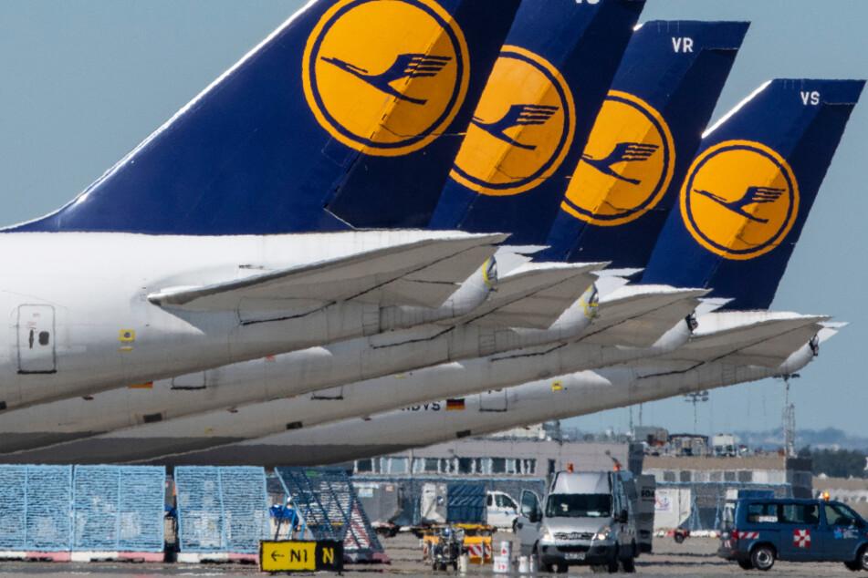 Das Foto vom 6. Mai zeigt infolge der Corona-Krise stillgelegte Passagiermaschine der Lufthansa auf dem Gelände des Frankfurter Flughafens.