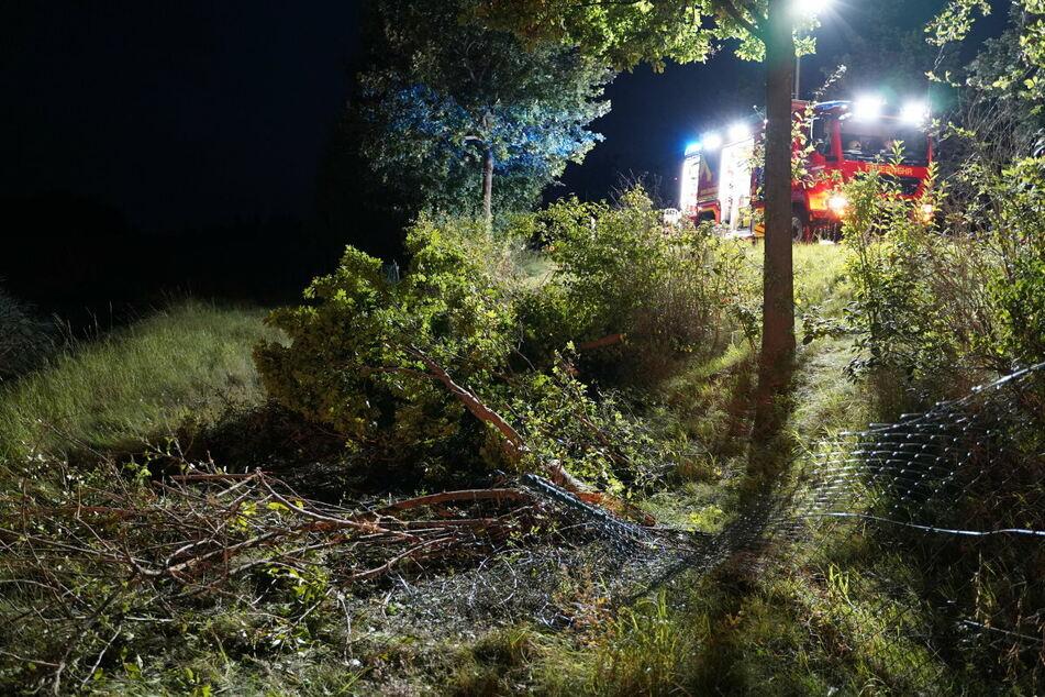 Bei dem Unfall wurde ein Zaun beschädigt und mehrere Bäume gefällt.