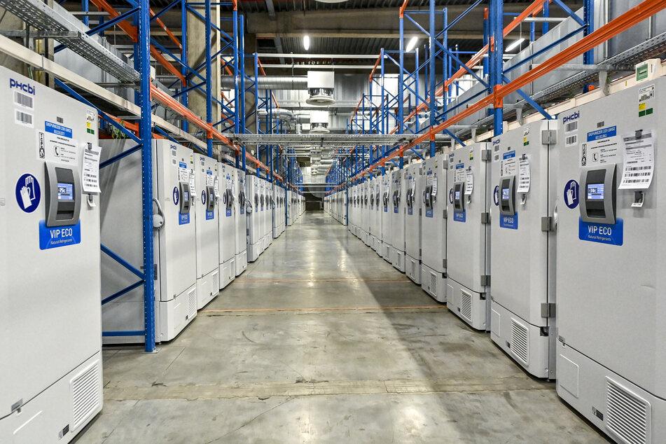 In diesen Kühlschränken im belgischen Puurs wird jede Menge Corona-Impfstoff von Biontech/Pfizer gelagert.