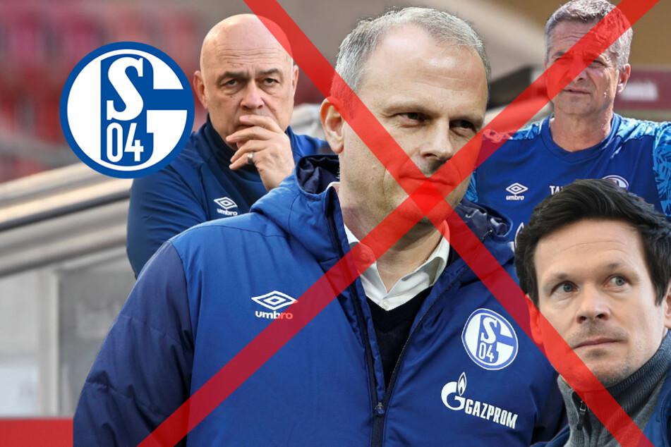 Rundumschlag bei Schalke 04! Fünf Verantwortliche sind raus!