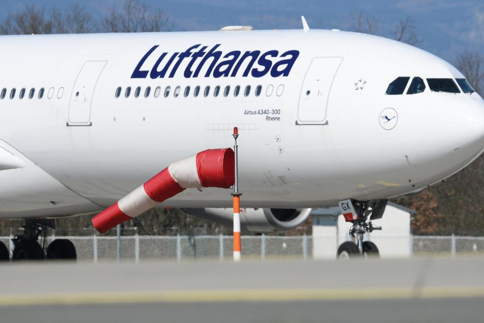 Ein Airbus A340 der Lufthansa soll die gestrandeten Europäer abholen. (Symbolbild)