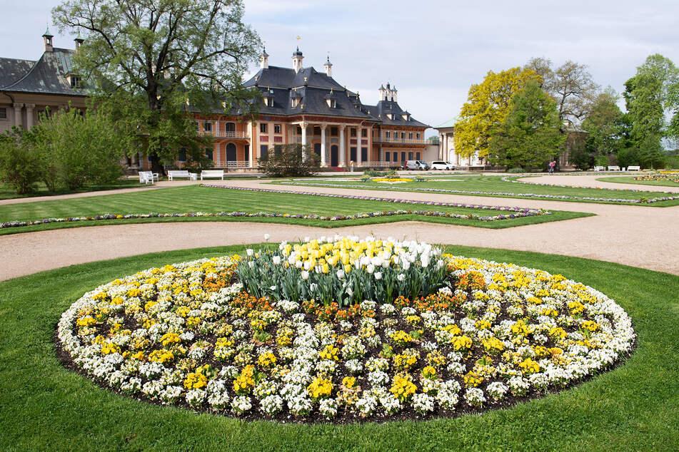 Auch der Schlosspark Pillnitz ist wieder offen. Allerdings gegen Eintritt.