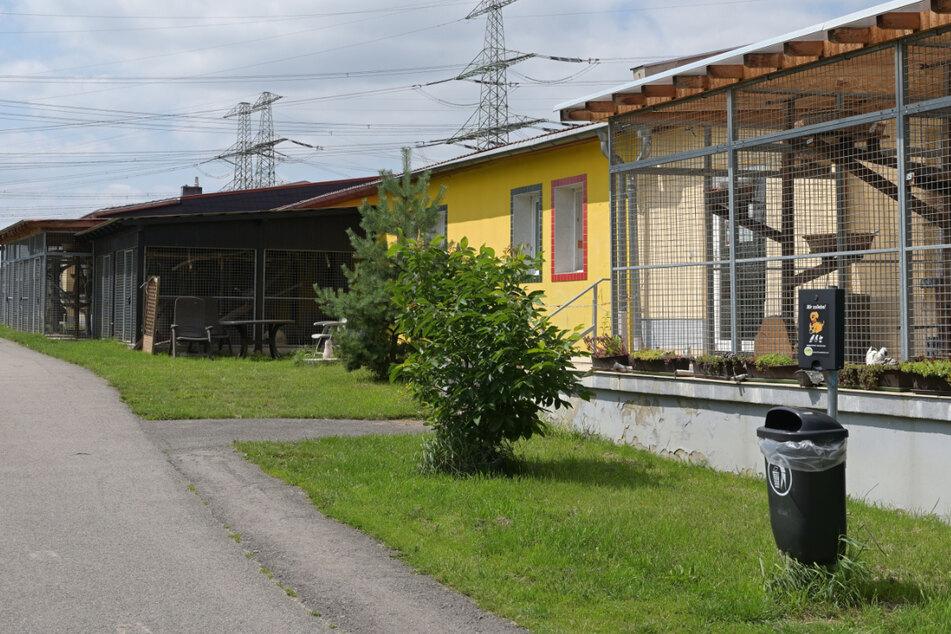 In der Einrichtung am Goetheweg entstand durch das Hochwasser hoher Sachschaden - Spenden werden gebraucht.