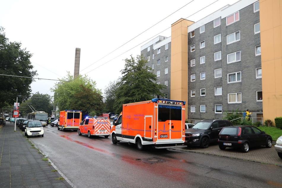 Der grausame Fund in Solingen: In einer Wohnung wurden fünf tote Kinder entdeckt.
