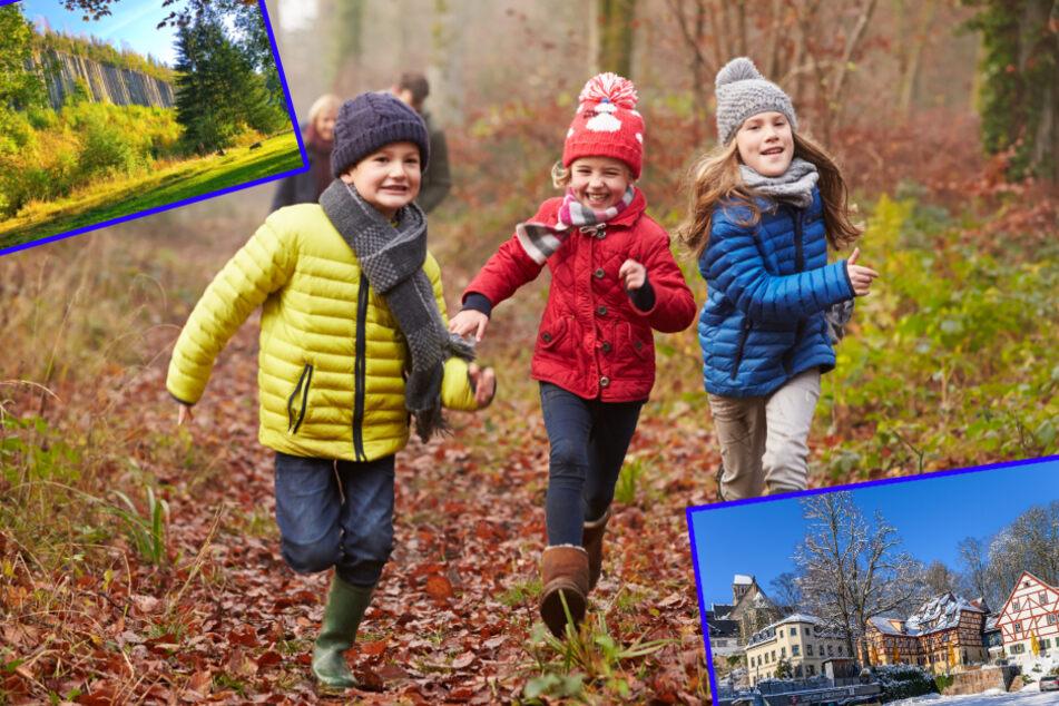 Chemnitz: Raus an die frische Luft: Fünf Tipps für Weihnachts-Spaziergänge