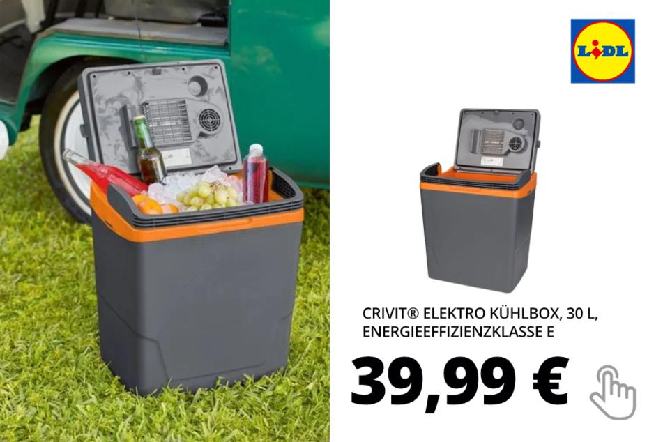 Elektro Kühlbox