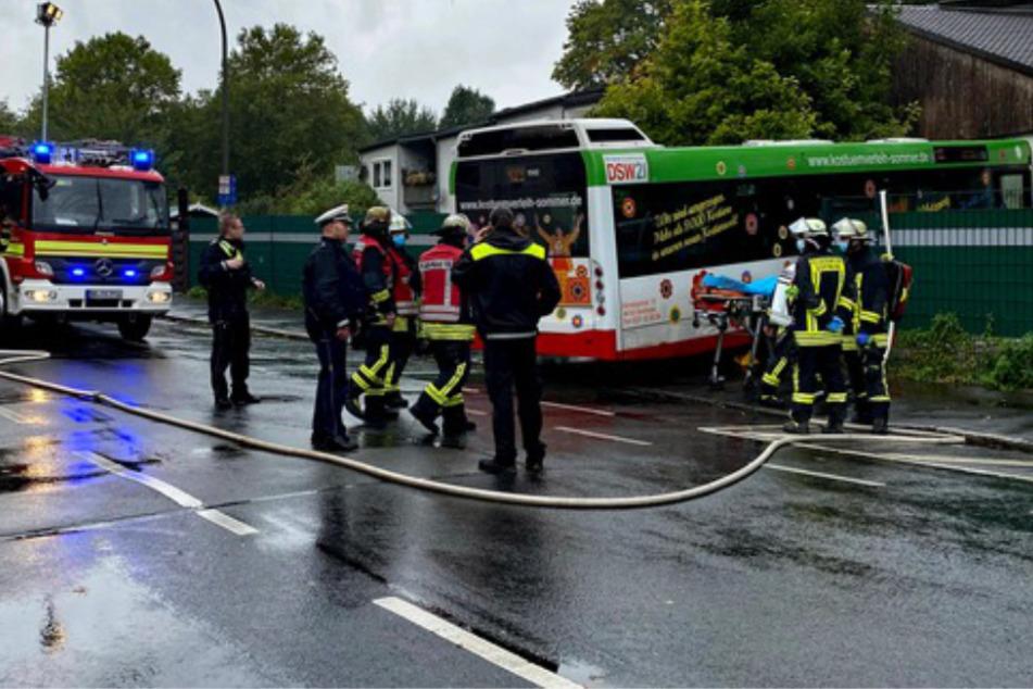 Linienbus kracht in Häuserfront, zwei Verletzte