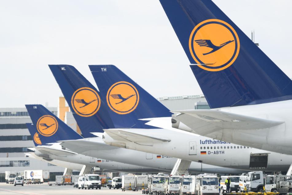 Tausende Stellen in Gefahr: Lufthansa-Piloten wollen auf Gehalt verzichten