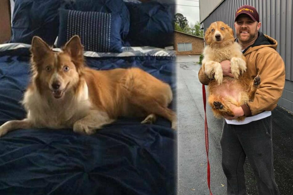 Eric mit seinem geliebten Hund Bella.