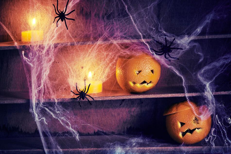 In Freital wird ein großes Halloween-Fest gefeiert.