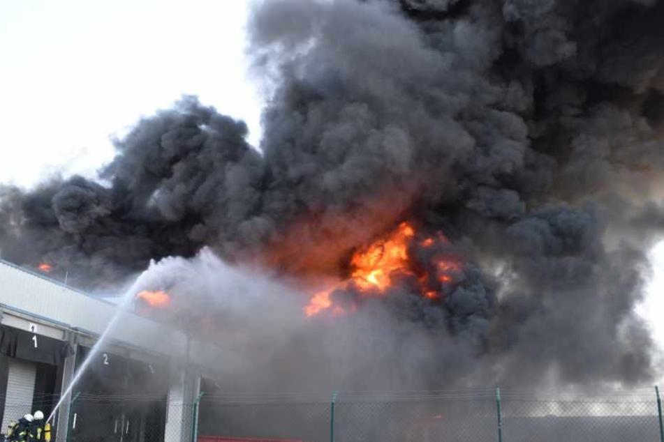 Dichte Rauchwolke zieht Richtung Stadt: Ehemaliger Schlachthof steht in Flammen