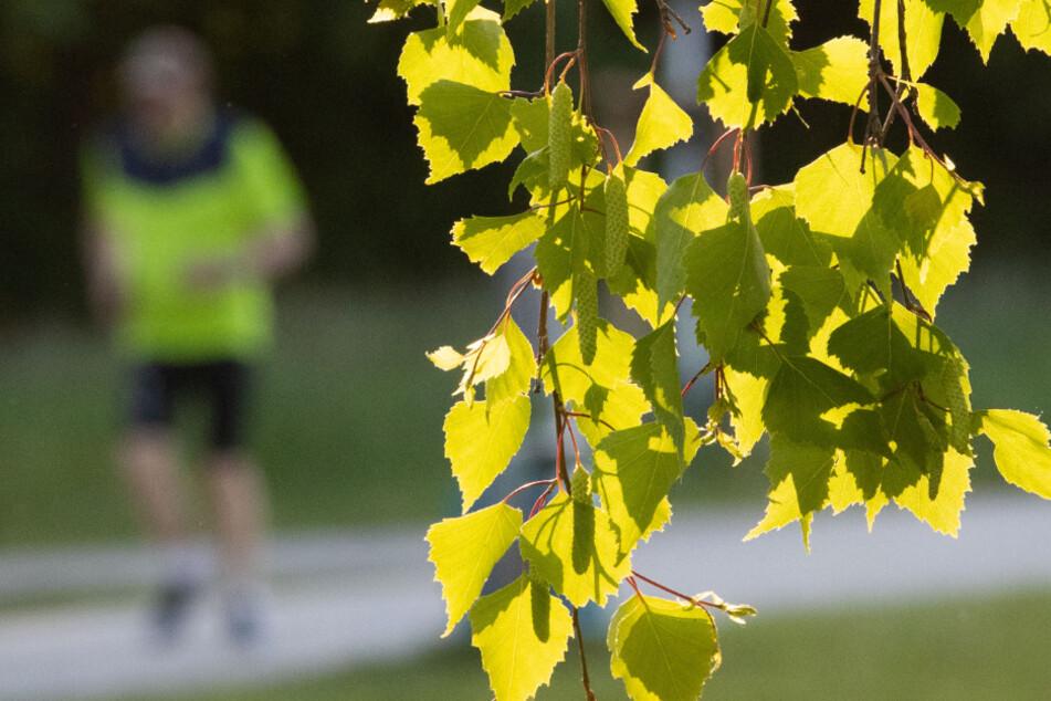 Leiche eines 21-jährigen Joggers entdeckt