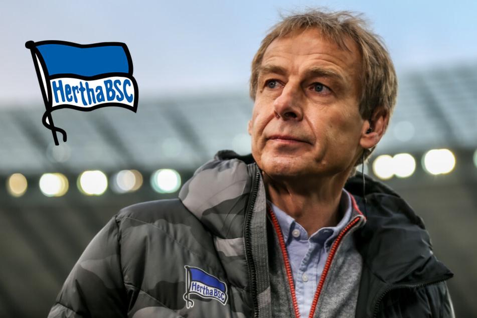Hertha-Rücktritt nach 77 Tagen: Klinsmann entschuldigt sich