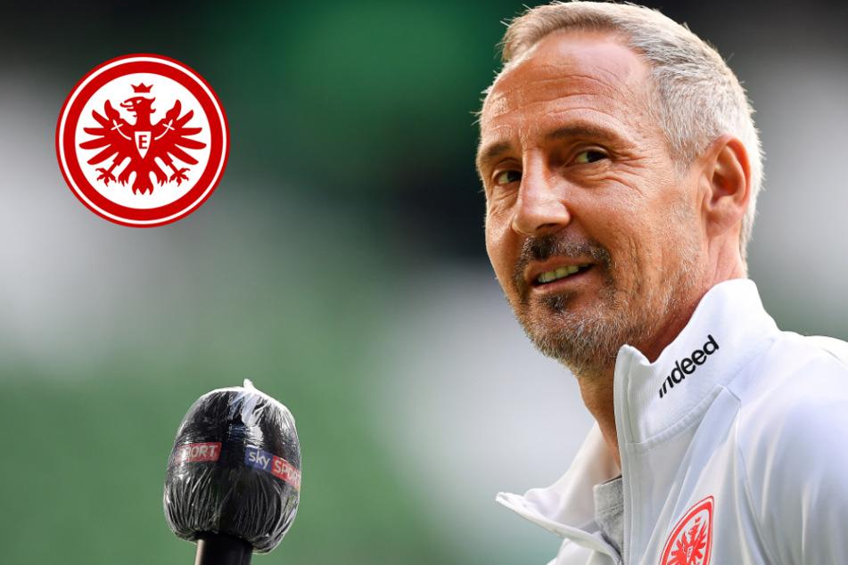 Eintracht-Coach Hütter legt sich fest: Er soll den gesperrten Kostic im DFB-Pokal bei 1860 ersetzen
