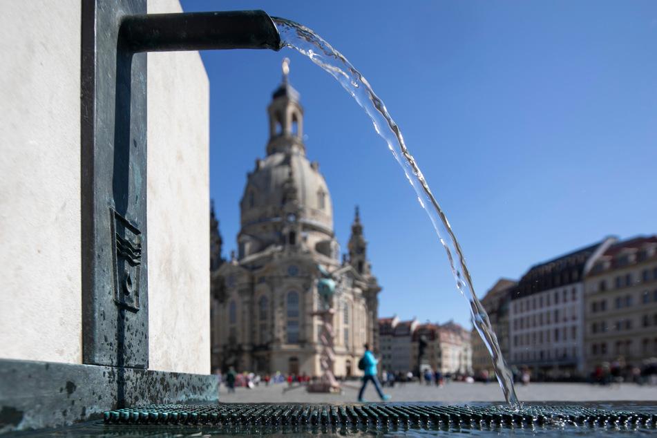 Auch am Neumarkt sorgt ein Trinkwasserbrunnen für Erfrischung.