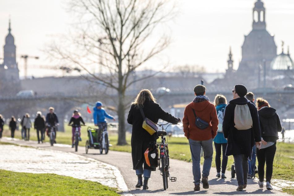 Dresden: Wenn das Virus das öffentliche Leben in Dresden lähmt:Eine Stadt im Corona-Modus