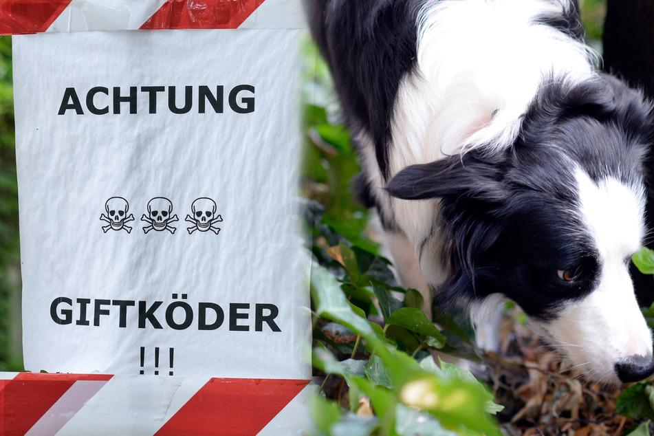 Dringende Warnung der Polizei: Hier sollen im Norden Giftköder liegen!