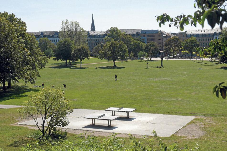 Im Alaunpark könnten Sportgeräte aufgestellt werden.