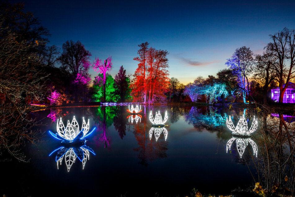 Eine Million Lichter beleuchten die 28 Hektar große Anlage aus dem 18. Jahrhundert.