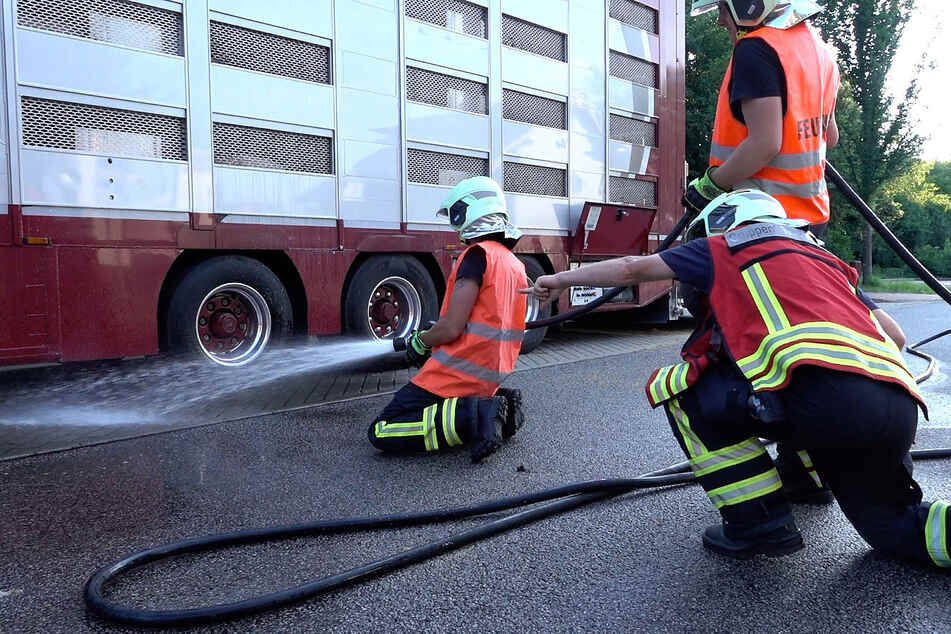 Die Feuerwehr versuchte alles, um es den Tieren angenehmer zu gestalten.