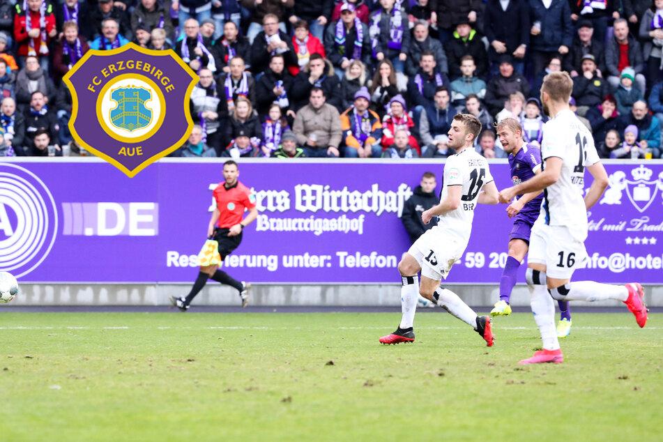 Aue empfängt den Tabellenführer: Können die Veilchen den HSV wieder ärgern?