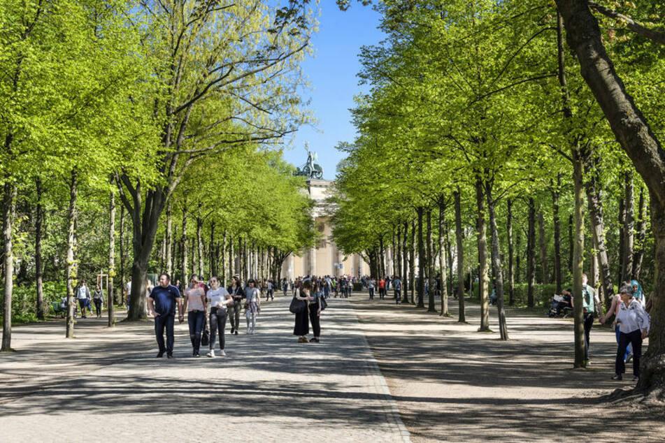 Mit Parks, Wäldern und Seen wirbt Berlin um Touristen. (Symbolbild)