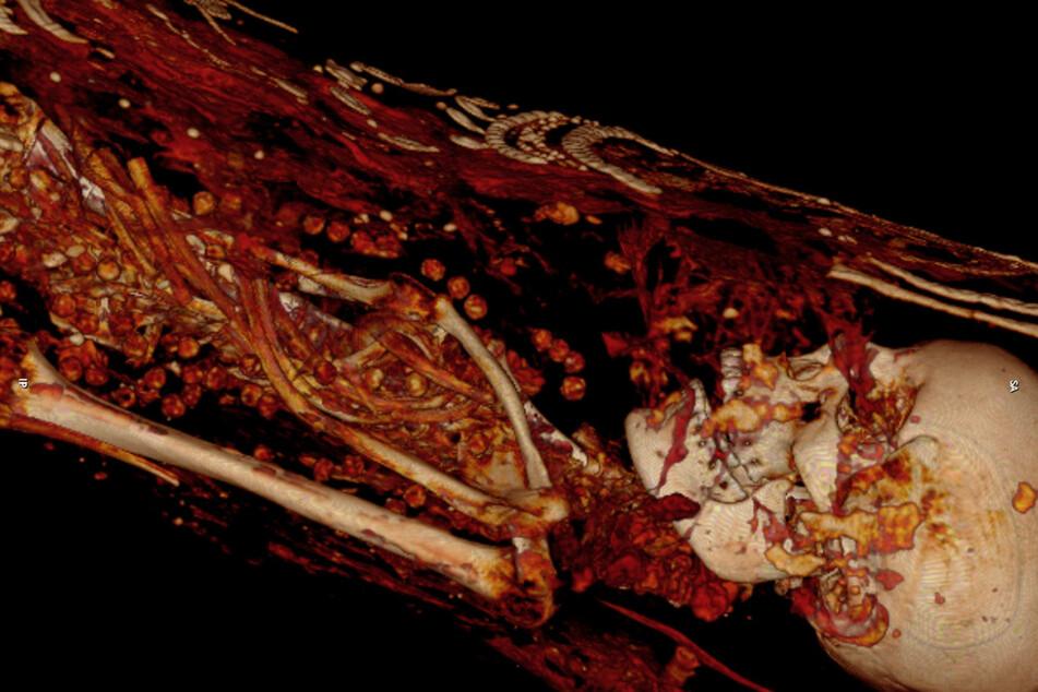 Blick durch die Sargdeckel. Eine der Mumien - umhüllt mit Tuch, bedeckt von Perlen.
