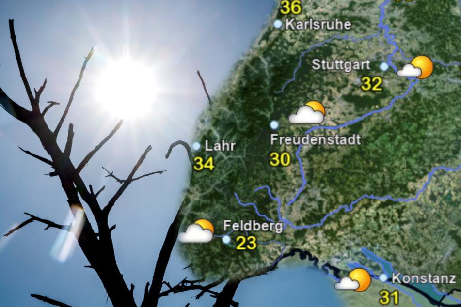 Extreme Hitze-Gefahr in Baden-Württemberg! Wetterexperten warnen